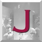 J_bouton