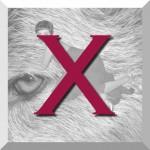 X_bouton