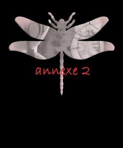 _annexe 2 ico